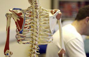 脊柱管狭窄症の手術は最終手段。8割はしびれが残り再発リスクも